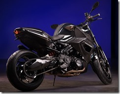BMW F 800 R PREDATOR CUSTOM BY VILNER 3